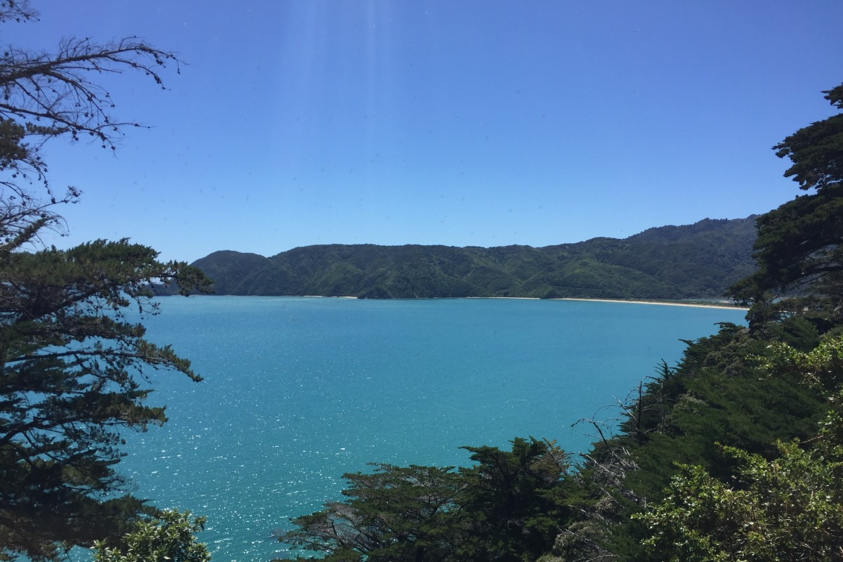 Week 14 – Fjordland, Aspiring National Park, Westland and Abel Tasman