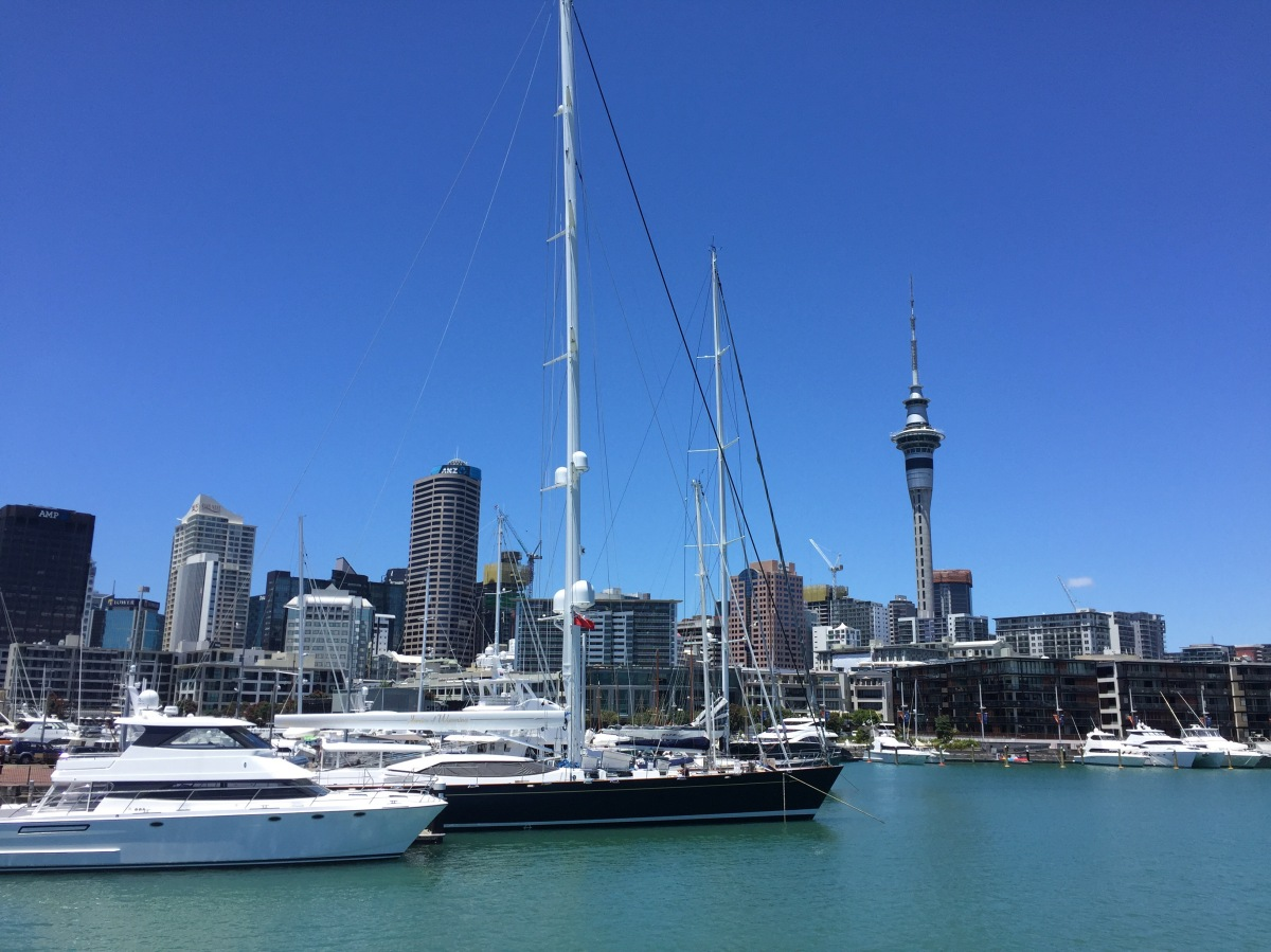 Week 15 – Auckland
