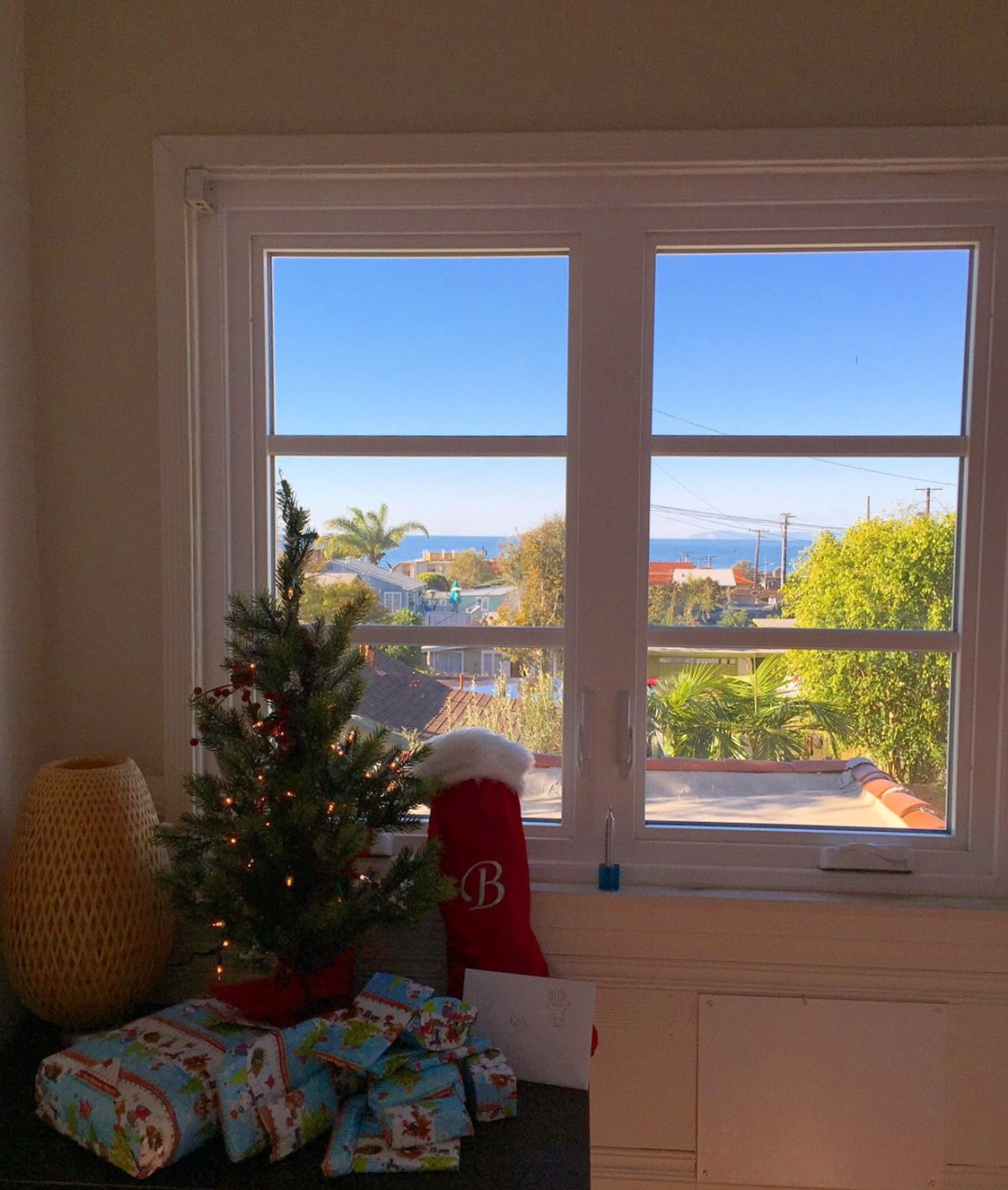 Weeks 16 & 17 – a Californian Christmas and NewYear