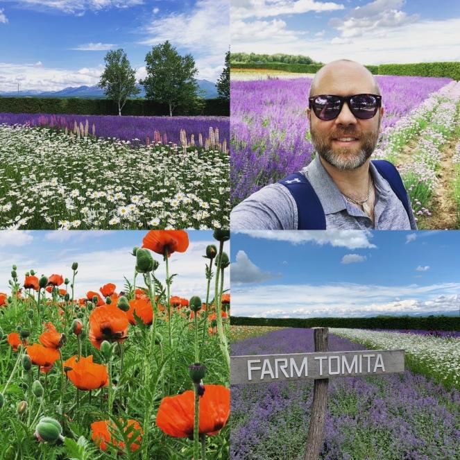 Hokkaido flower fields at Farm Tomita