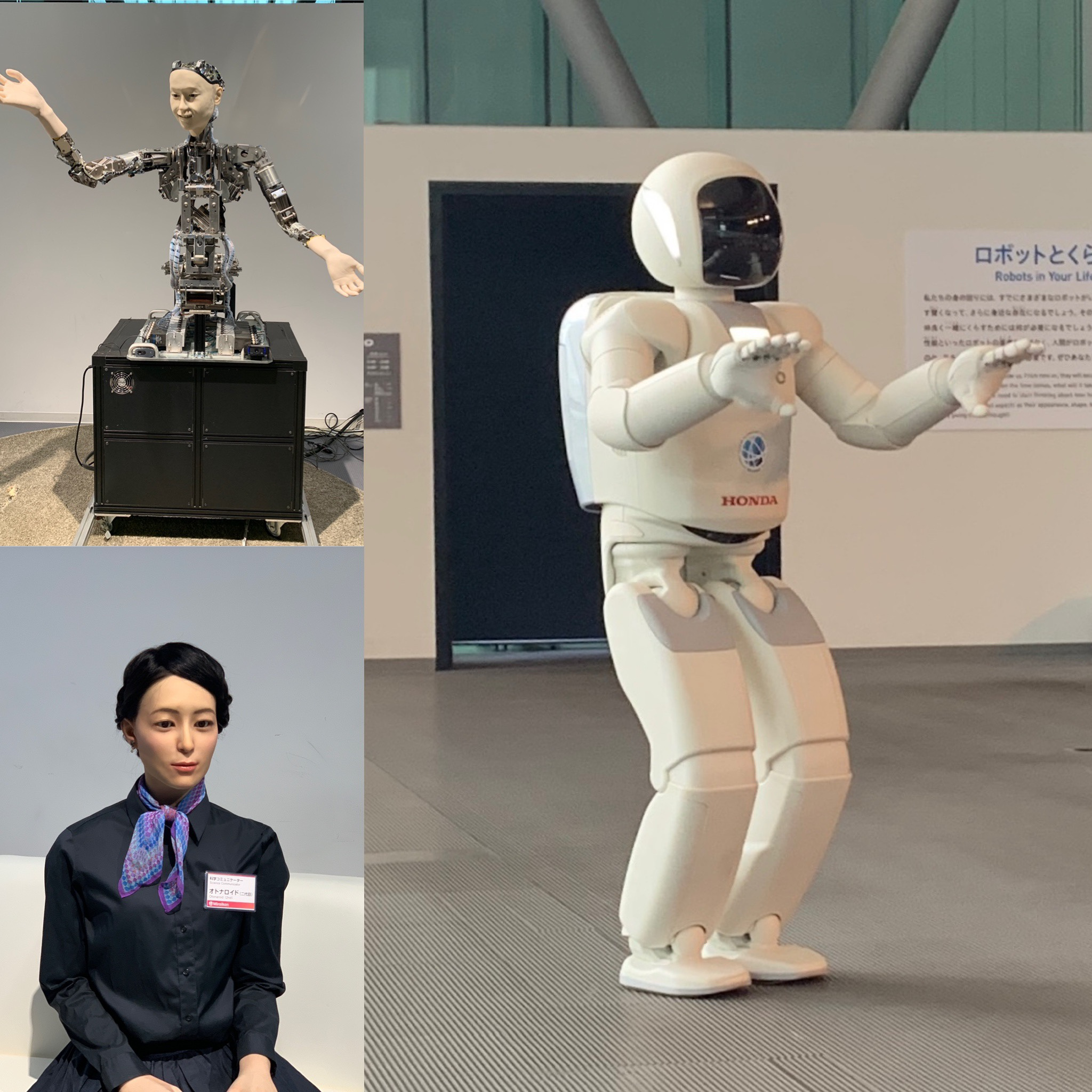 Robots in the Museum of Science and Emerging Innovation